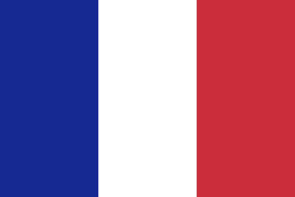 Drapeau français FS Conseils